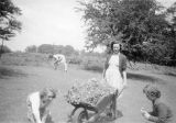 Brown envelope - Students collecting flowers in a wheelbarrow